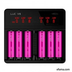 Efest LUC V6 LCD and USB 6 Slots Charger