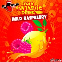Your Fantastic Drink - Wild Raspberry  - Big Mouth